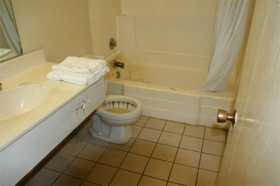 we were in room 118 review of willow inn suites blythe With disgusting bathroom pictures