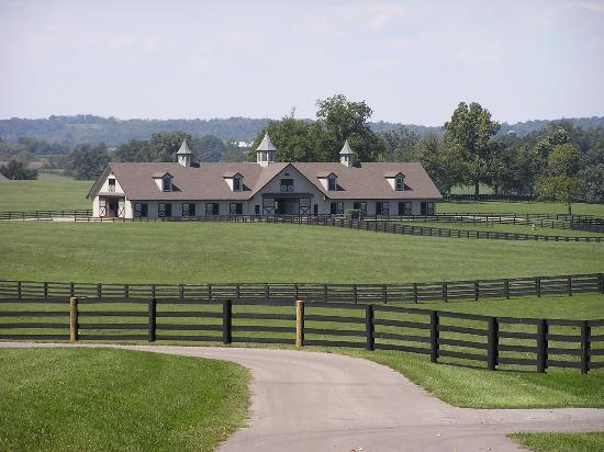 1823 Historic Rose Hill Inn: A Horse Farm Barn - Versailles, KY
