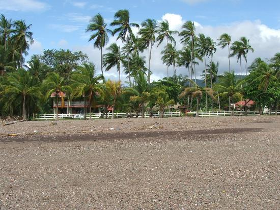 Tangeri Hotel: Hotel viewed from the Beach