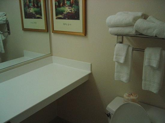 Extended Stay America - Washington, D.C. - Rockville: bathroom