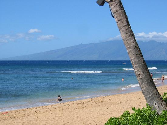 Best beaches in the united states for Nice beaches in usa