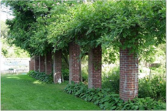 Danvers, MA : Brick columns covered in vines 