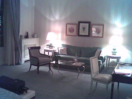 Four Seasons Hotel des Bergues Geneva: Junior Suite / Sofa
