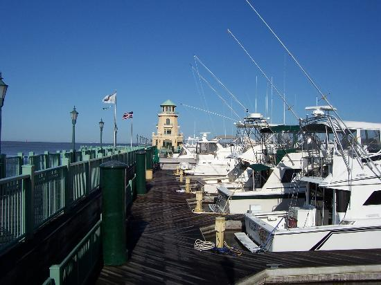 Biloxi, MS: Beau Rivage Marina