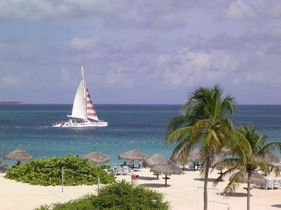 Palm - Eagle Beach, Aruba: Another lazy day at the Bucuti in Aruba