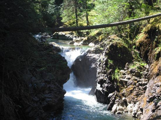 Little Qualicum Falls Provincial Park