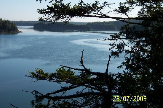 Photo of South Bay Campground Lubec