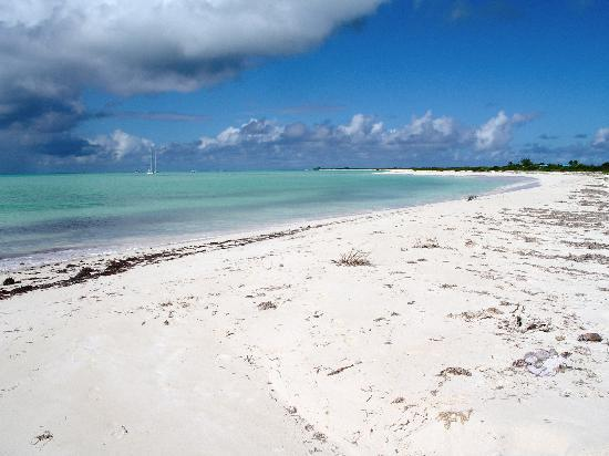 Anegada: 1st beach day, about a 15 min. walk away.  It really was this secluded.