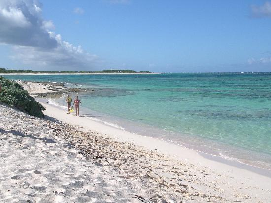 Anegada: Beach view @ flash of beauty.