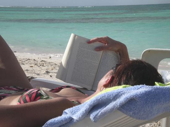 Reading is one of the great summer pleasures