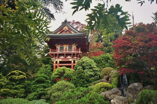San Francisco, CA: Golden Gate Park - Japanese Tea Garden