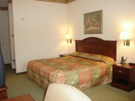 Country Inn & Suites Prattville: King bed