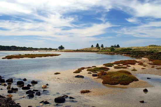 Port Fairy, Australia: PF beach