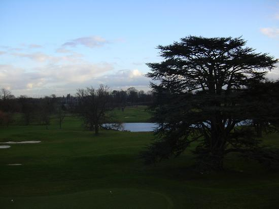 Ware, UK: View from room
