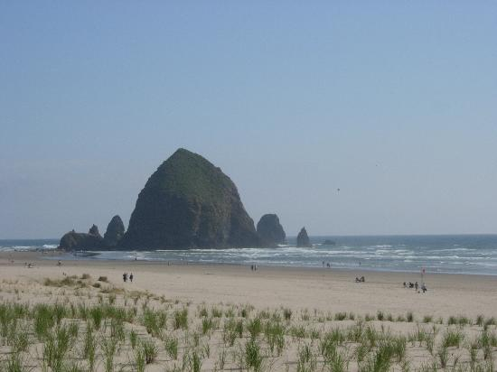Best Restaurants In Cannon Beach