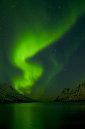 Rica Ishavshotel: Northern Lights in Fjord