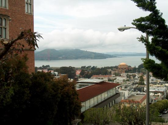 Hotel Drisco : A view of the Golden Gate bridge, seen a couple of blocks from the hotel.