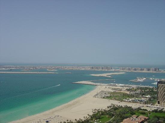 Oasis Beach Tower Apartments: another view of the gulf from 29th floor