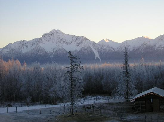 Alaska&#39;s Harvest B&amp;B: Our view from our room one morning