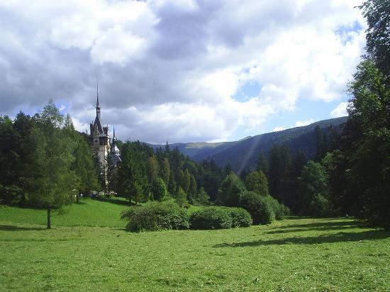 Sinaia bed and breakfasts