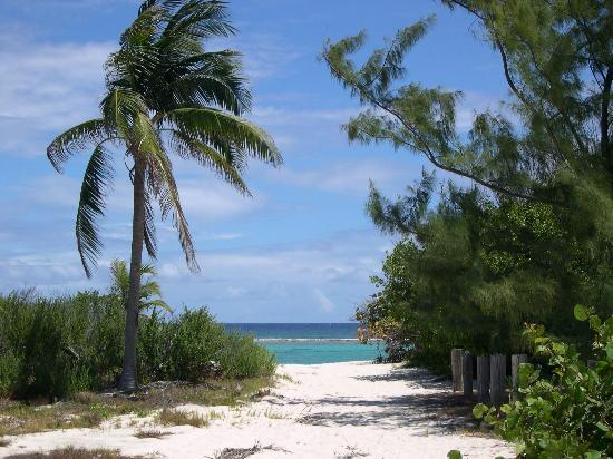 Little Cayman : Point of Sand 