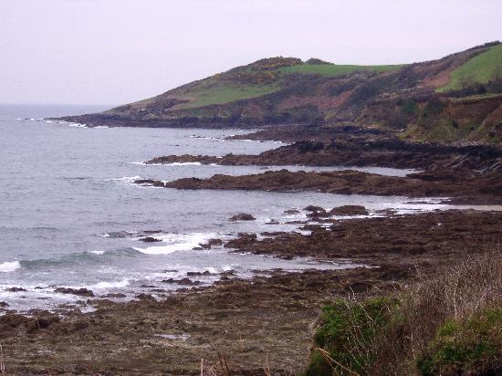 Falmouth, UK: There is even a shoreline at the end of the path
