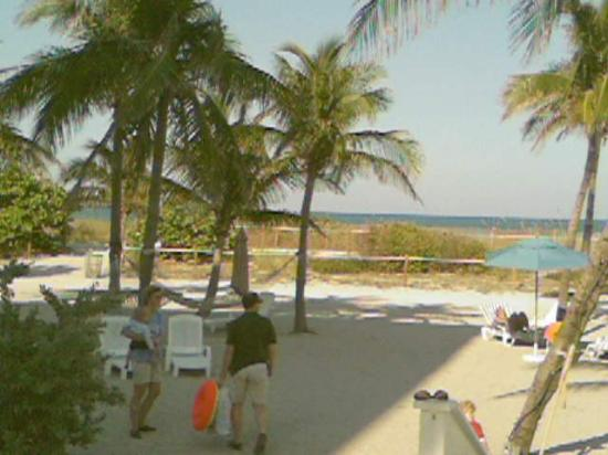 Beach House Bal Harbour: Hotels Private Beach Inc. Hammocks