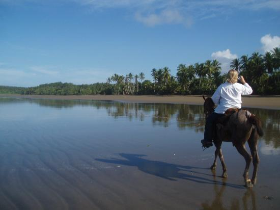 Uvita, Costa Rica : riding with Cuca