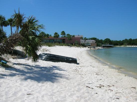 Gulf Breeze, Φλόριντα: Beach -  off of pool