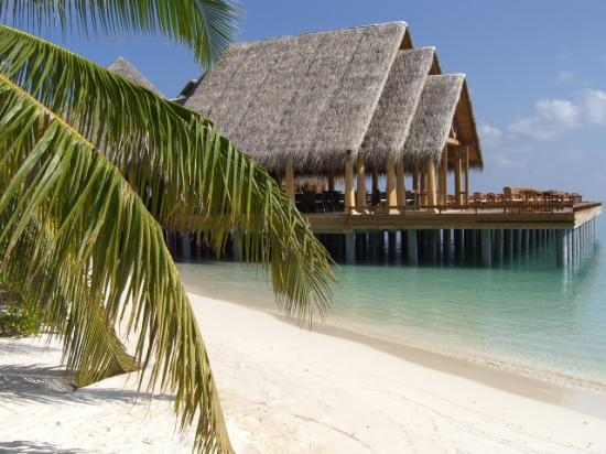 Baros Maldives: The restaurant for half board guests
