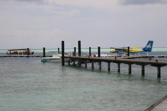 Island Hideaway Spa, Resort &amp; Marina: Sea plane and dhoni dive boat