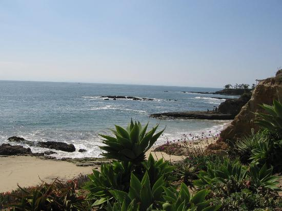 The Surf and Sand Resort: Laguna Beach