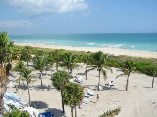 Beach House Bal Harbour: Semi Private Beach Area