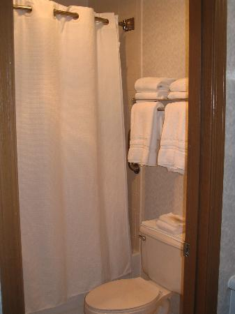 Quality Inn & Suites Eureka Springs: Bathroom