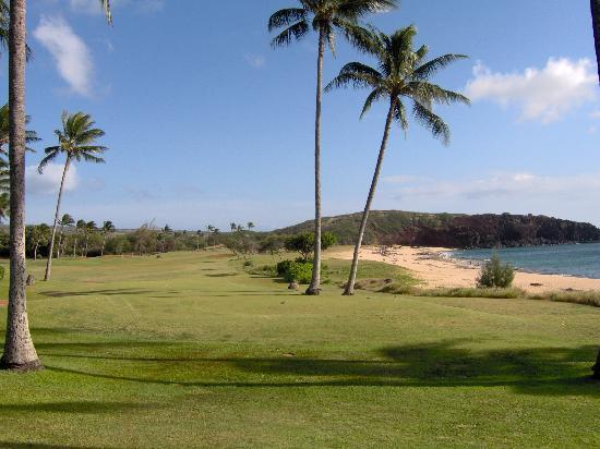 Maunaloa, Hawái: Golf anyone??