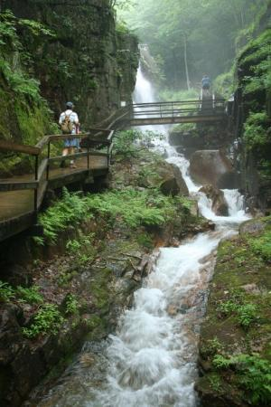 Franconia, NH: Trails Along The Flume