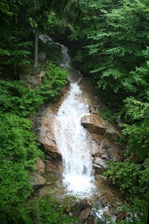 Franconia, Нью-Гэмпшир: Another waterfall in the Flume