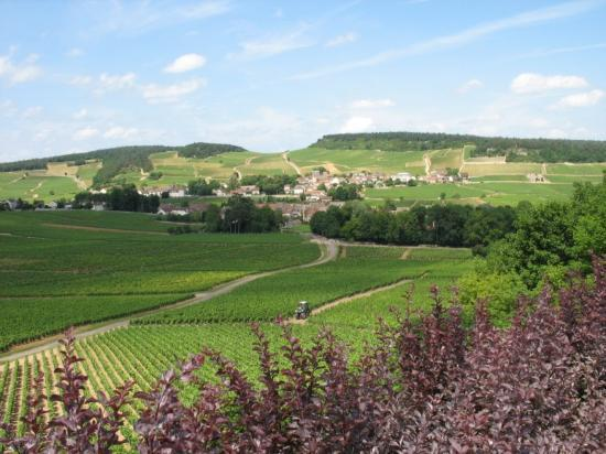 Beaune, France : Vive la Bourgogne!