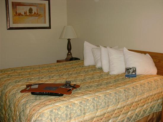 Hampton Inn Abilene: pillows, lap pad, mints=cozy!
