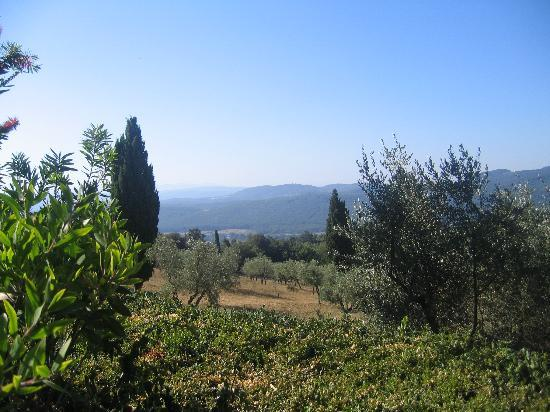 Tenuta La Bandita: The view!