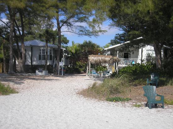 Little Gull Cottages: beach side