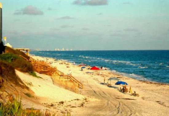 http://media-cdn.tripadvisor.com/media/photo-s/00/16/47/4d/seagrove-beach-looking.jpg