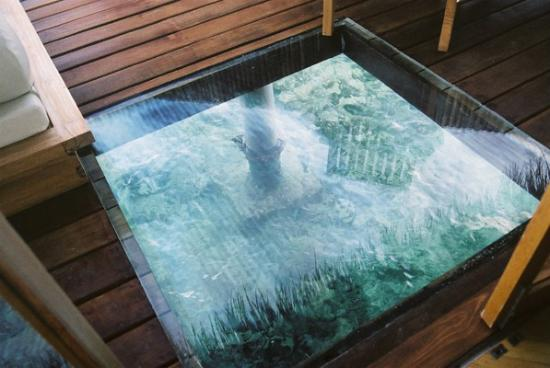 Glass Floor On The Decking Picture Of Adaaran Prestige