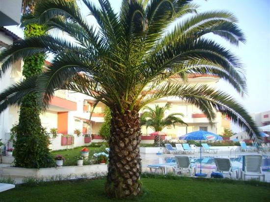 Photo of Athanasios Studios & Apartments Halkidiki