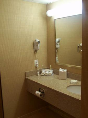 Holiday Inn Express Hotel & Suites Warrenton: Bathroom granite