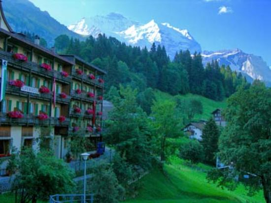 Photo of Alpenrose Wengen