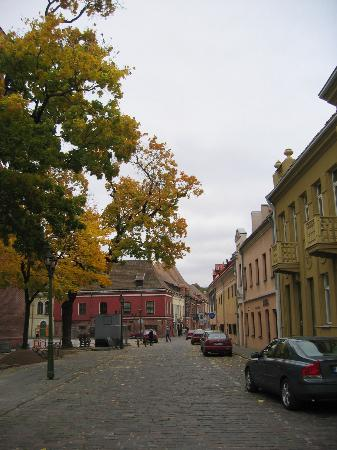 Nemunas Tour: Old Town Kaunas