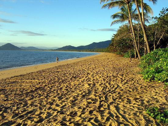Palm Cove, : beach across from hotel