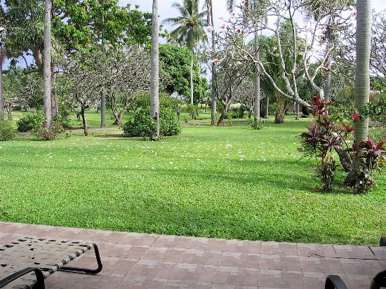 Pirae, French Polynesia: Hotel grounds from room