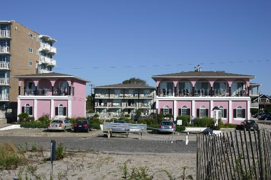 view from the beach picture of periwinkle inn cape may. Black Bedroom Furniture Sets. Home Design Ideas